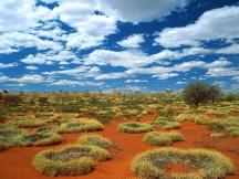 Australian_Nature