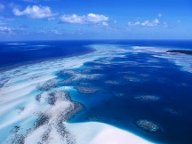 Coral_Reef___Torres_Strait_Islands